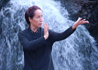 Special Events - Chinese Healing & Movement Arts: classes in